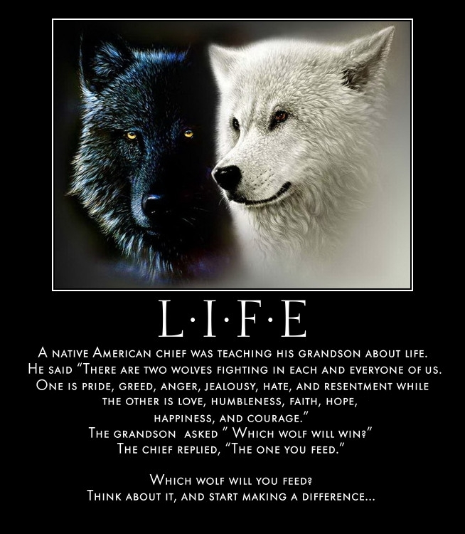 Tales of 2 wolves